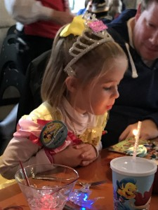 Birthday girl blows out a candle